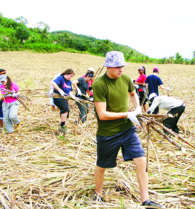 The young members of Mission Team 2017 were hard at work gathering up sugar cane from this field.
